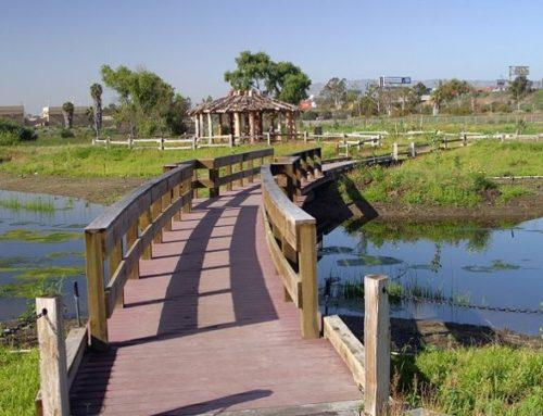 Bixby Marshland Restoration